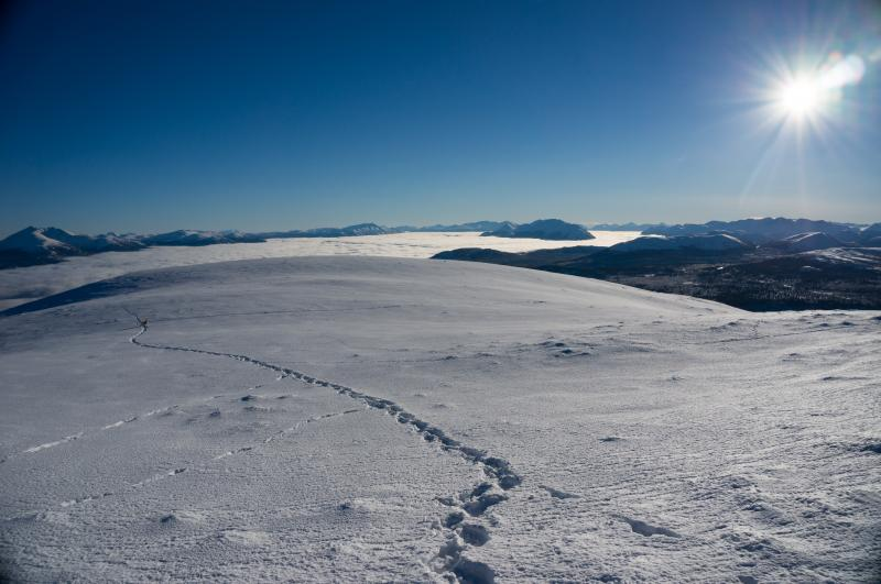 Golden Horn | Hiking, skiing, and snowshoeing trails in the